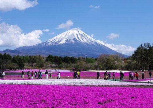 Tour del Giappone